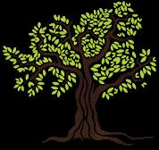 magna-grecia-tree-footer